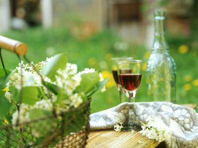 Two Glasses of Red Wine in Springtime Garden-Christine Gill?-Photographic Print