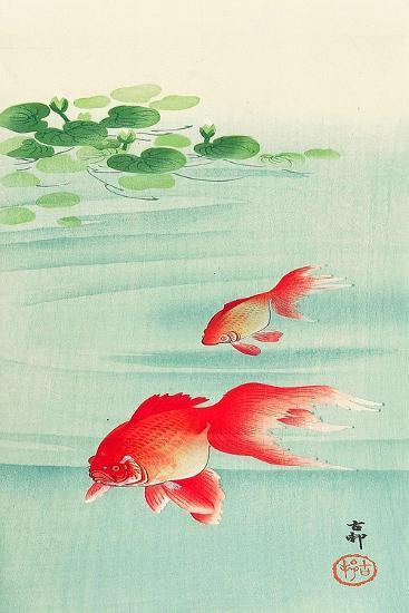 Two Goldfish-Koson Ohara-Giclee Print