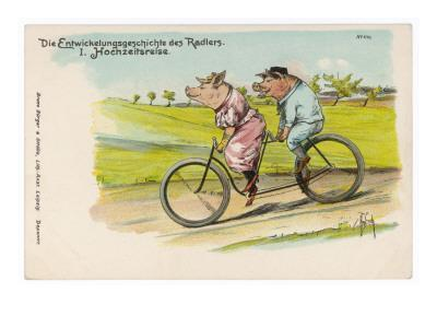 Two Happy Pigs Out for a Ride on their Tandem Bicycle--Giclee Print