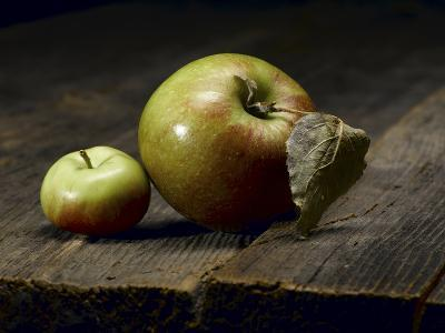 Two Heirloom Apples Shot on Old Barn Wood-Rebecca Hale-Photographic Print