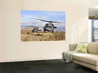 Two HH-60 Pavehawk Helicopters Preparing to Land--Wall Mural