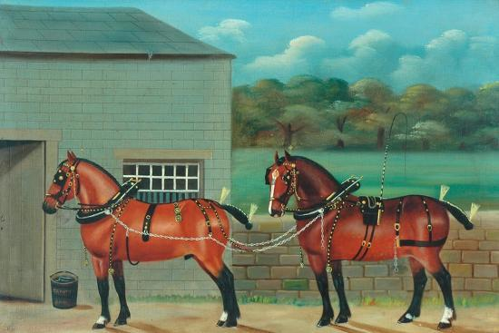 Two Horses in Harness, c.1910--Giclee Print