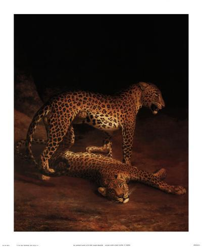 Two Leopards Playing in the Exeter Change Menagerie, c.1808-Jacques-Laurent Agasse-Art Print