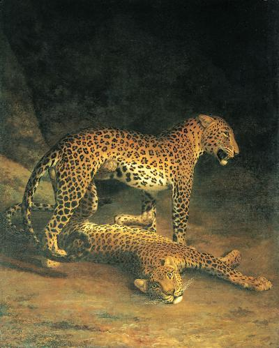 Two Leopards Playing-Jacques-Laurent Agasse-Art Print