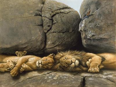 Two Lions Head to Head-Harro Maass-Giclee Print