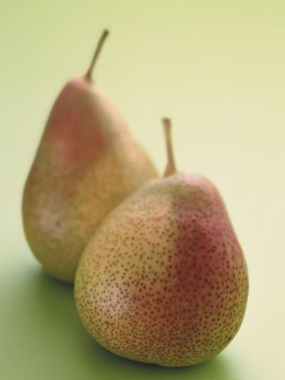 Two Pears on a Green Background--Photographic Print