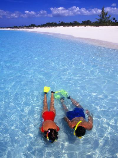 Two People Snorkelling in Blue Water Near Beach-Greg Johnston-Photographic Print
