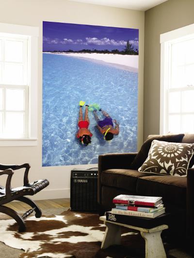 Two People Snorkelling in Blue Water Near Beach-Greg Johnston-Wall Mural