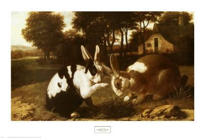 Two Rabbits in a Landscape--Art Print