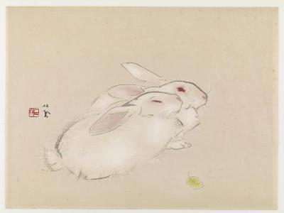 Two Rabbits--Giclee Print
