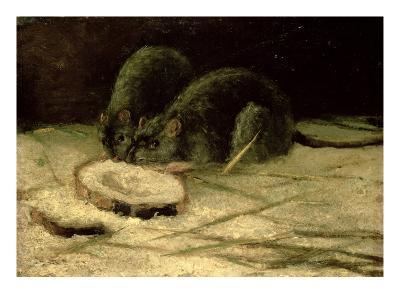 Two Rats, C.1884-Vincent van Gogh-Giclee Print