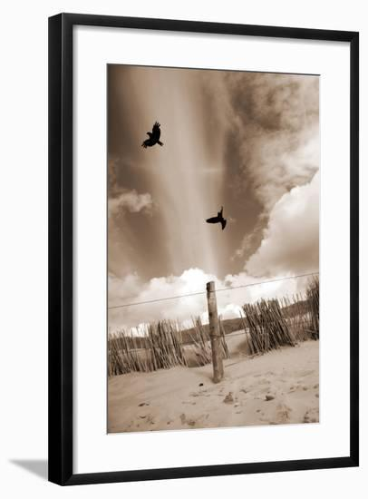 Two Raves Flying over the Dunes in Sepia Tones-Alaya Gadeh-Framed Photographic Print