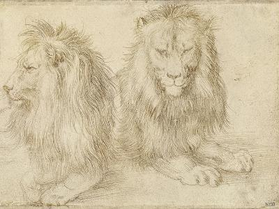 Two Seated Lions, 1521-Albrecht D?rer-Giclee Print