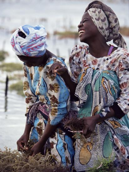 Two Smiling Zanzibari Women Working in Seaweed Cultivation, Zanzibar, Tanzania, East Africa, Africa-Yadid Levy-Photographic Print