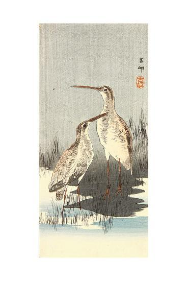 Two Snipes-Koson Ohara-Giclee Print