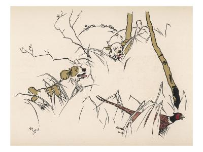 Two Spaniels Chase a Frightened Pheasant Through the Undergrowth--Giclee Print