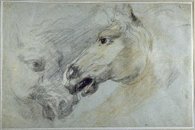 Two Studies of a Horse's Head-Jan Boeckhorst-Giclee Print