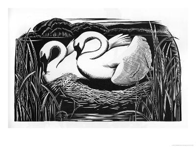 Two Swans-Clifford Webb-Giclee Print