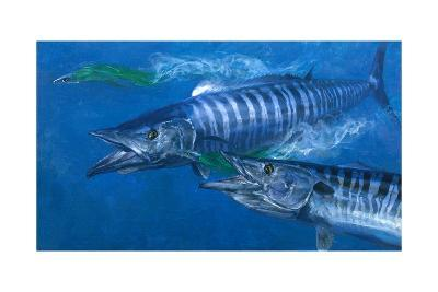 Two Wahoo, 1986: Two of the Fastest Fish in the Sea Close in on Colorful Trolling Lures-Stanley Meltzoff-Giclee Print