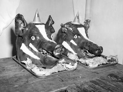 Two Well Decorated Roasted Pigs Heads in Australia, Ca. 1955.-Kirn Vintage Stock-Photographic Print