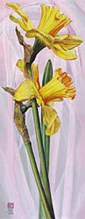 https://imgc.artprintimages.com/img/print/two-yellow-daffodils_u-l-f11jix0.jpg?p=0