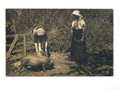Two Young Women Tend to Pigs in Their Pen--Giclee Print