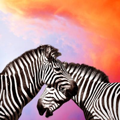 Two Zebras On The Sky-yuran-78-Photographic Print