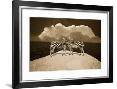 Two Zebras, Port Austin, MI '11-Monte Nagler-Framed Photographic Print