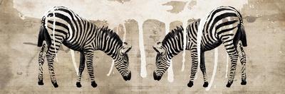 https://imgc.artprintimages.com/img/print/two-zebras_u-l-pylt5b0.jpg?p=0