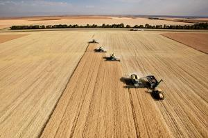 Four Harvesters Combing on a Prairie Landscape in Formation by Tyler Olson