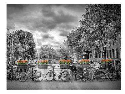 https://imgc.artprintimages.com/img/print/typical-amsterdam_u-l-f8isv10.jpg?artPerspective=n