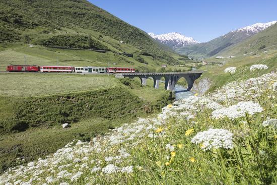 Typical red Swiss train on Hospental Viadukt surrounded by creek and blooming flowers, Andermatt, C-Roberto Moiola-Photographic Print