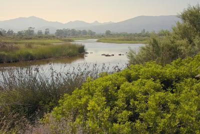 Typical Sardinian Landscape, Water Pond and Mountains in the Background, Costa Degli Oleandri-Guy Thouvenin-Photographic Print