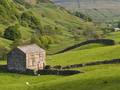 Typical Stone Barns Near Keld in Swaledale, Yorkshire Dales National Park, Yorkshire, England-John Woodworth-Photographic Print