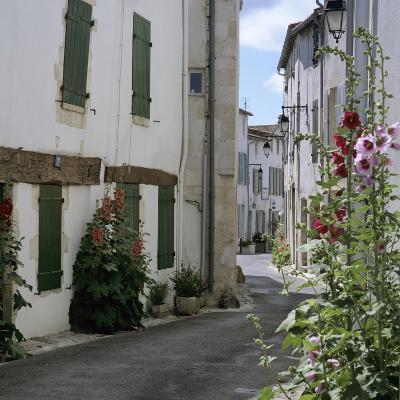 Typical Street Scene with Hollyhocks, St. Martin, Ile de Re, Poitou-Charentes, France, Europe-Stuart Black-Photographic Print