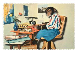 Typing Chimpanzee