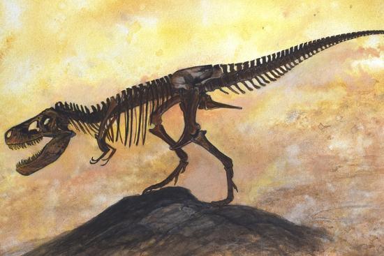 Tyrannosaurus Rex Dinosaur Skeleton-Stocktrek Images-Art Print