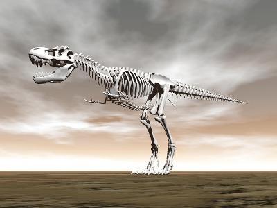 Tyrannosaurus Rex Skeleton--Art Print