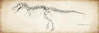 Tyrannosaurus Rex--Premium Giclee Print