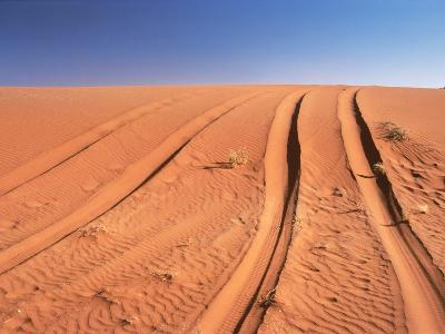 Tyre marks in the desert--Photographic Print