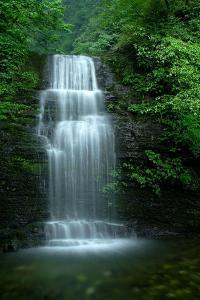 Waterfall in Misty Green Forest of Emei Shan by Tyrone Turner