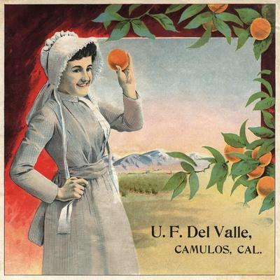https://imgc.artprintimages.com/img/print/u-f-del-valle-brand-camulos-california-citrus-crate-label_u-l-q1grbt30.jpg?p=0