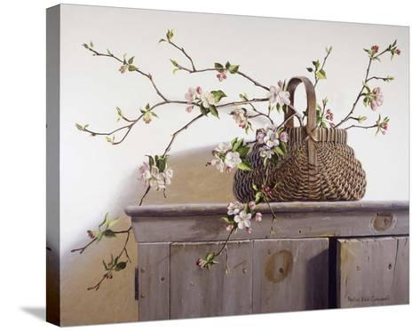 Apple Blossoms-Pauline Ebl? Campanelli-Stretched Canvas Print