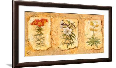 Secret Garden III-Walter Kano-Framed Art Print