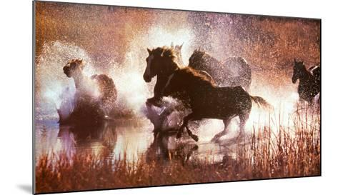 The LX Saddle Horses-David R^ Stoecklein-Mounted Art Print