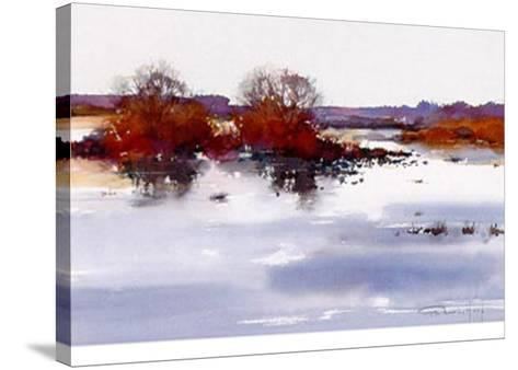 Silence IV-Pieter Van Hoof-Stretched Canvas Print