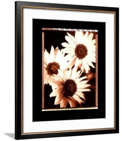 Beautiful Flower IV-Gerard Van Hal-Framed Art Print