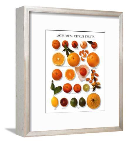 Citrus Fruit--Framed Art Print