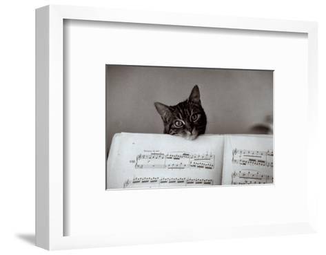 Partition-Edouard Boubat-Framed Art Print