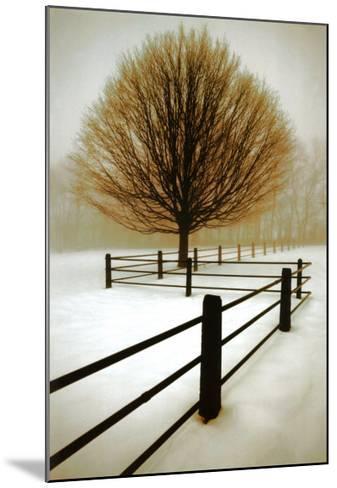 Solitude-David Winston-Mounted Art Print